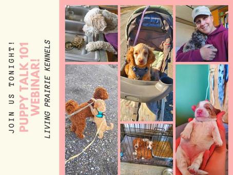 Puppy Talk 101!