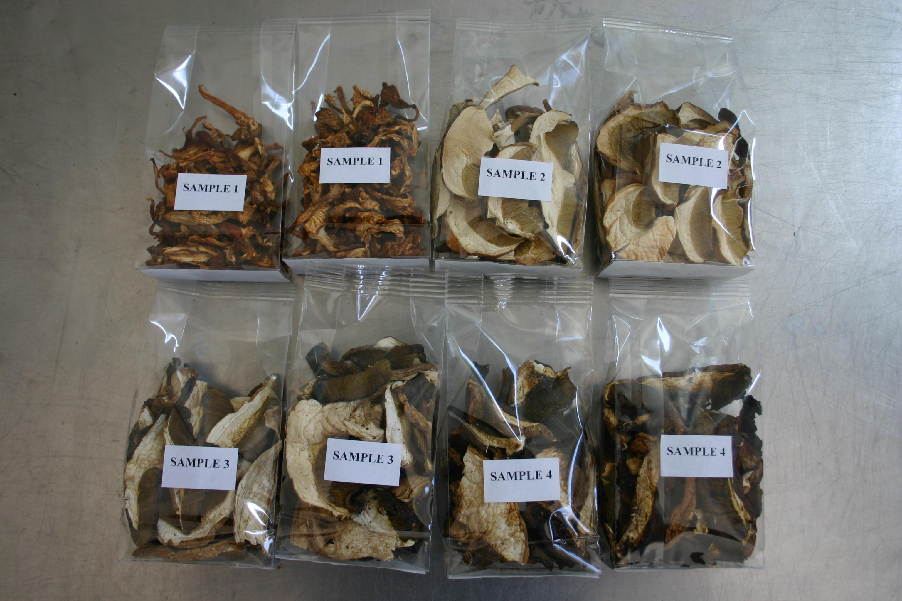 Samples Dried Mushrooms