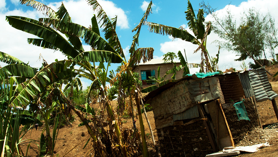 Baraka Children's Home Garden