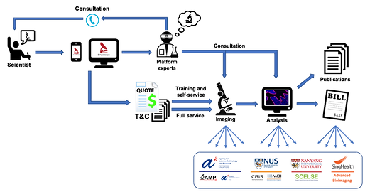 SinaScope_Workflow_Transparent.png