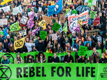 Movimentos Sociais - Extinction Rebellion