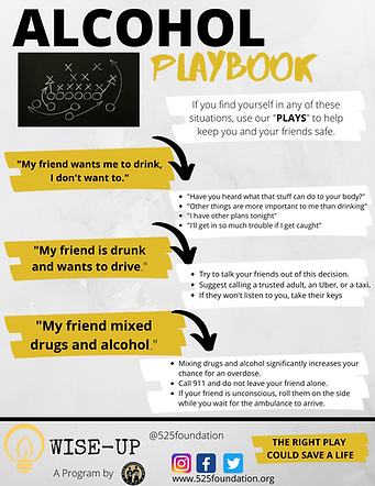 Alcohol Playbook.png