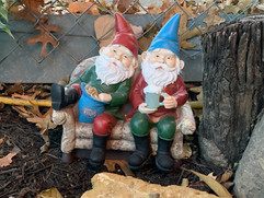Chilling with my gnomey.