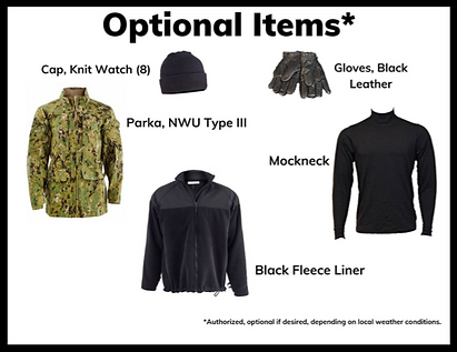 type3 optional items.png