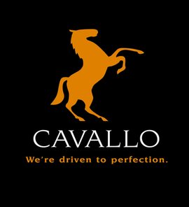 CAB sponsorship logo.png