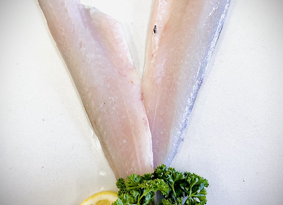Whiting Fillet