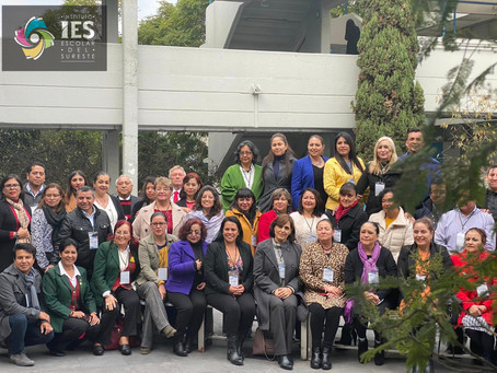 Reunión Anual Interna de la Red Nacional de Educación Superior de Trabajo Social RENIESTS - IES 2020