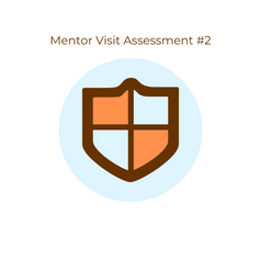 ISM research Mentor LOGO Assessment (1).