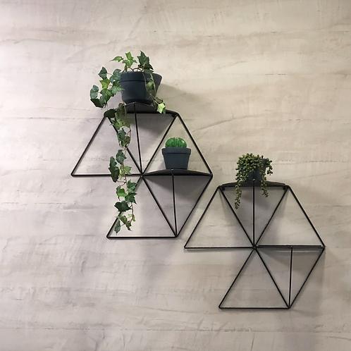 Repiza hexagonal, dos plantas.