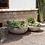 Thumbnail: Bowls en cemento