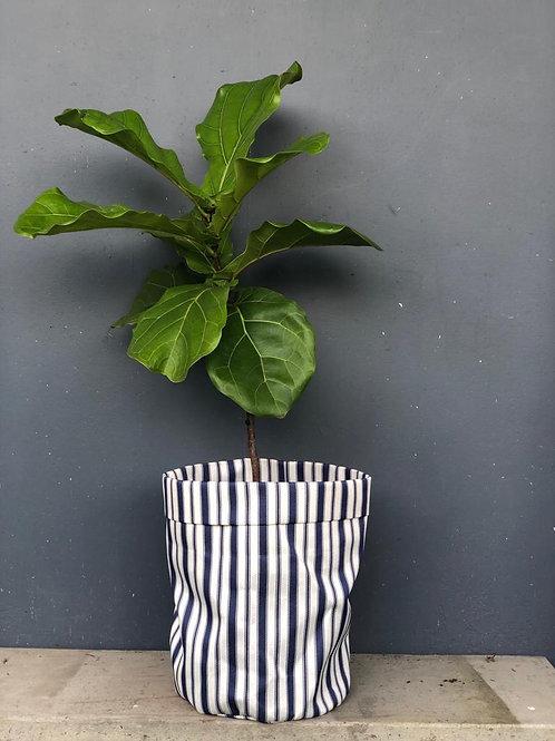 Materas en tela con planta