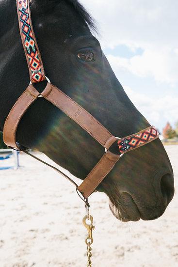 Licols chevaux