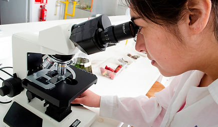 Microbiología_web_1.jpg