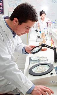 Microbiología_web_2.jpg