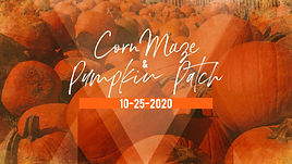 CMG Editor - October 10 2020.jpeg