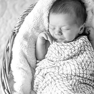 Pattyn Newborn