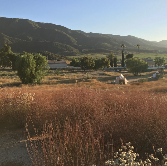SUNSETS ECO-CAMPS OVERLOOK PERCH