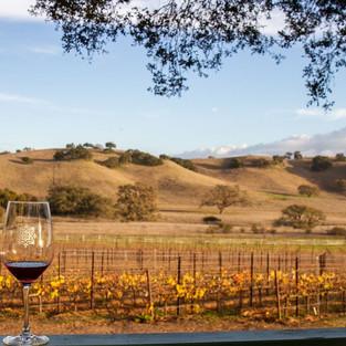 Santa Yanez Valley Wineries