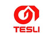 Лого TESLI