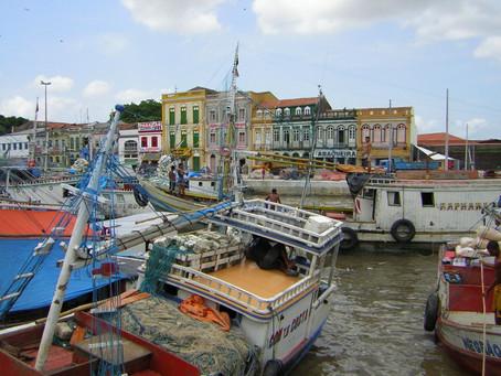 Belém, the capital of mango trees