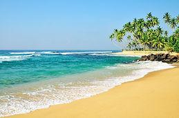 Dalawella Beach.jpg