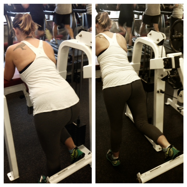 Glute Kickback/extension (machine)