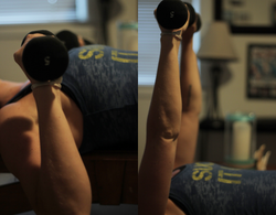 Chest Press (DB)