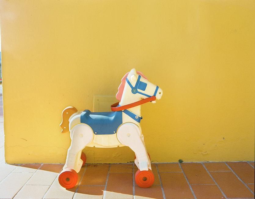 cavallo_gioc.jpg