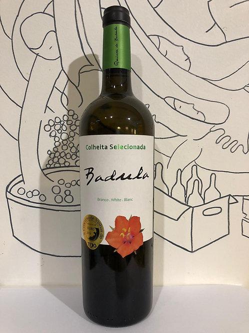 Badula Colheita - Tejo region White Wine