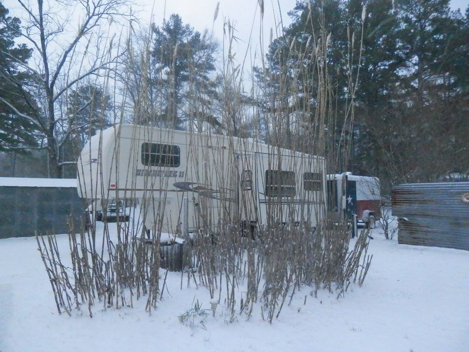 Bring Your RV & explore the forest @ Gibby n Dall's