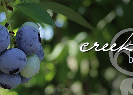 creekside berry farm talimena scenic drive