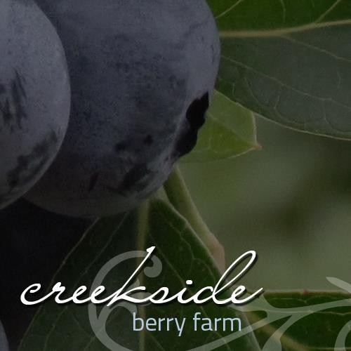 creekside berry farm talimena scenic byway