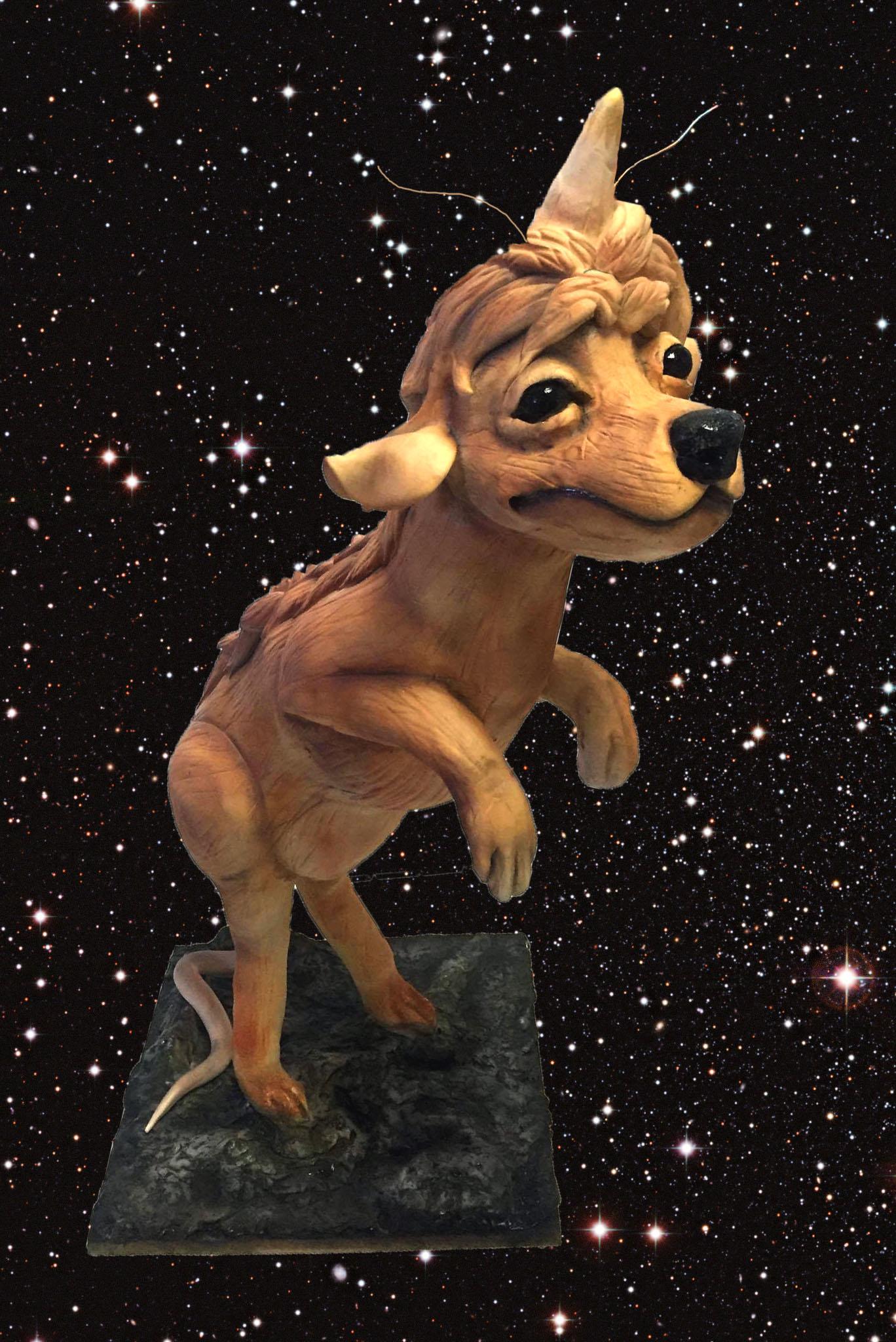 Star Trek Collab Space Dog Main