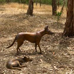 Papa Tjukurpa: Dingo Story