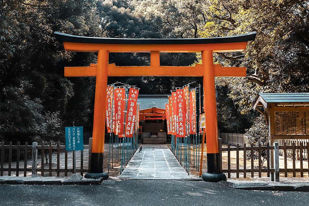 torii à l'entrée d'un sanctuaire shinto au Japon