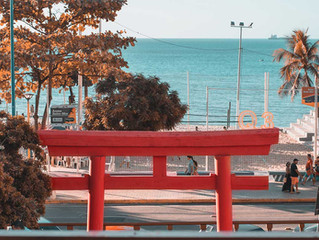 Que penser du concept d' «appropriation culturelle» en relation avec le torii?