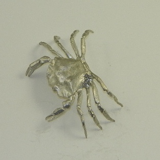 Pewter Juvenile Green Crab