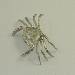 Pewter Juvenile Green Crab