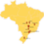 mr fritz brasil.png