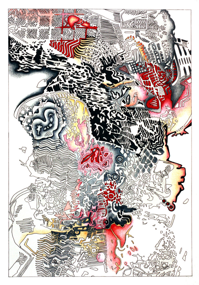 """IMPRESSIONS No.1, Ink and pencil on paper, 15"""" x 22.5"""", 2011"""