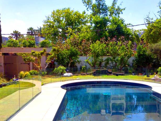 עצי פרי מחבקים את הבריכה - גינת קרקע
