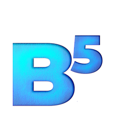 b5.png