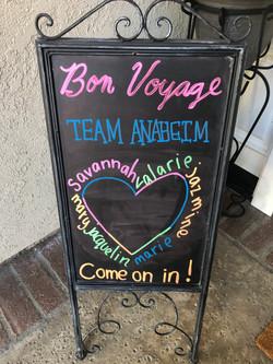 Team Anaheim Bon Voyage Party 2019