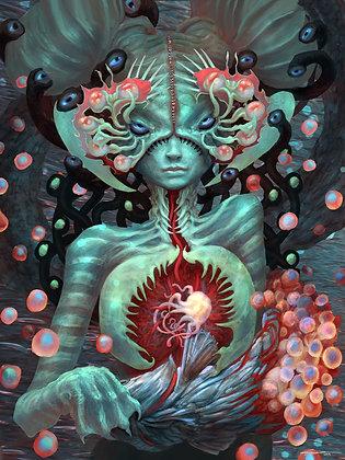 Jelly Heart