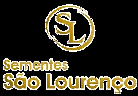 SÃO LOURENÇO_edited.png