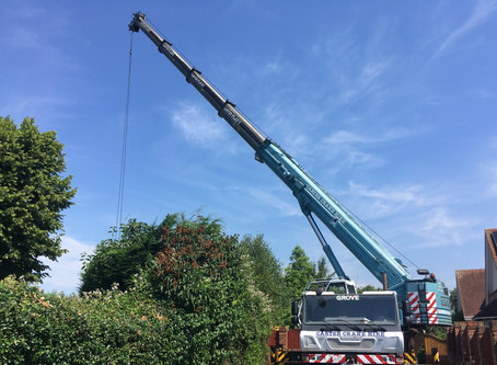 Want to be a mobile crane operator?