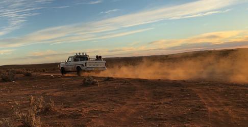 LOCUSTS truck desert.jpg