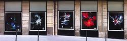 Cream galerie street 2012