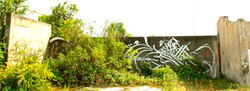 kgt white Lyon 2011