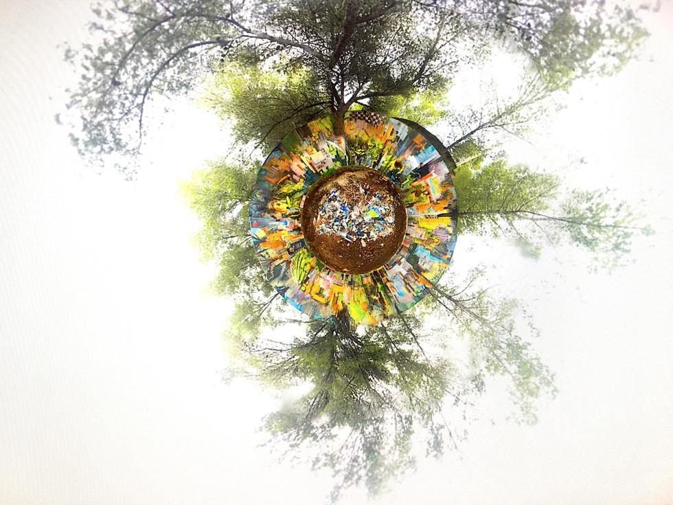 360° REZINE World Bug Virtual 2020